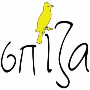 spiza_bird_521x512xweb
